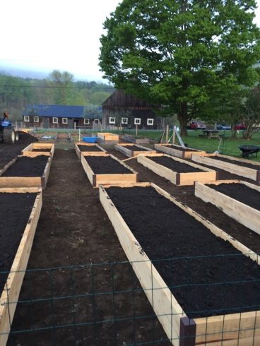 Newly completed raised beds for the garden!